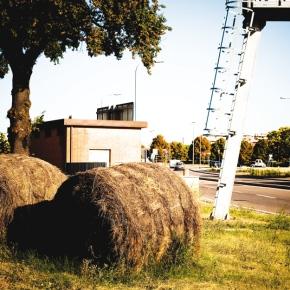 rural vs city